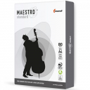 Офисная бумага А4, 80 г/м2, 500 листов Maestro Standart