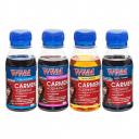 Комплект чорнил WWM CARMEN для Canon (4 х 100г) B/C/M/Y (CARMEN.SET-2)