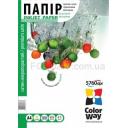 Фотобумага Colorway сатин, микропор. 260г/м, A4 PS260-50